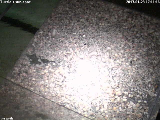 time-lapse frame,  webcam