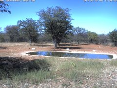 view from Sophienhof Lodge Waterhole on 2018-05-28