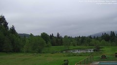 view from Olympic View Cabins Hurricane Ridge Cam on 2018-05-20