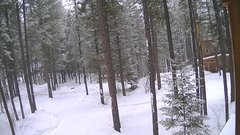 view from Cabin on 2018-03-08