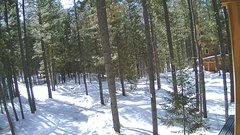 view from Cabin on 2018-03-12