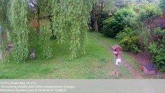view from Wembury, Devon. Garden Cam on 2018-06-17