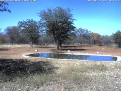 view from Sophienhof Lodge Waterhole on 2018-06-20