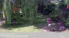 view from Wembury, Devon. Garden Cam on 2018-06-24