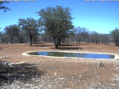 view from Sophienhof Lodge Waterhole on 2019-04-11
