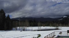 view from Olympic View Cabins Hurricane Ridge Cam on 2019-03-13