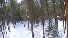 view from Cabin on 2019-02-07