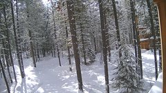 view from Cabin on 2019-02-13
