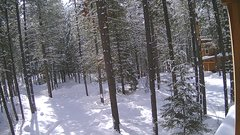 view from Cabin on 2019-02-15