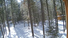 view from Cabin on 2019-02-16
