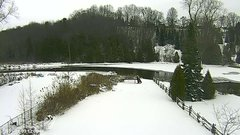 view from YardCam on 2019-01-03