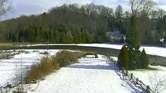 view from YardCam on 2019-01-06