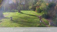 view from Wembury, Devon. Garden Cam on 2018-11-12