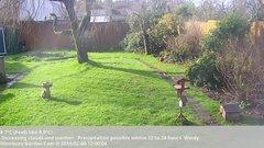 view from Wembury, Devon. Garden Cam on 2019-02-06