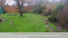 view from Wembury, Devon. Garden Cam on 2019-02-07