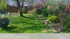 view from Wembury, Devon. Garden Cam on 2019-04-20