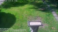 view from Wembury, Devon. Garden Cam on 2020-07-30
