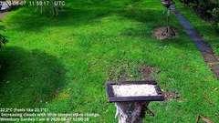 view from Wembury, Devon. Garden Cam on 2020-08-07