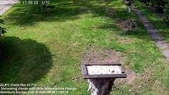 view from Wembury, Devon. Garden Cam on 2020-08-09