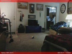 view from Webcam on 2021-01-11